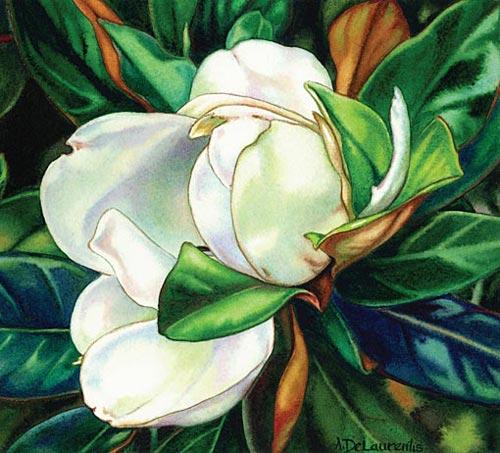 Ann DeLaurentis, Giant Magnolia 2 (watercolor on paper, 7x8)