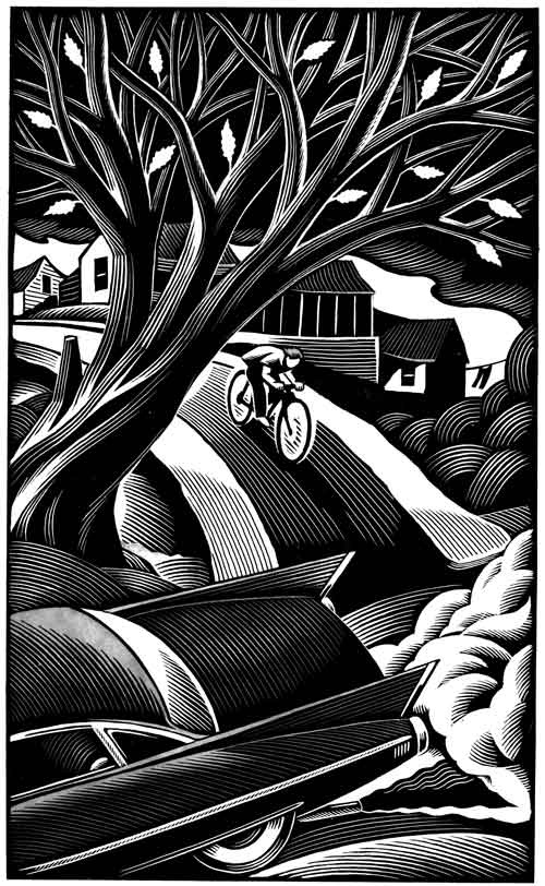 Chris Gall illustrator Gypsy Davey Chris Lynch