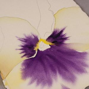 Birgit O'Connor, watercolor flower painting, petals 1