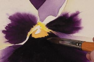 Birgit O'Connor, watercolor flower painting, petals 4