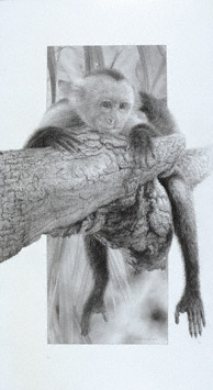 Art by David Kitler | ArtistsNetwork.com