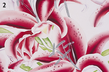Painting a Stargazer Lilly with Watercolor 1
