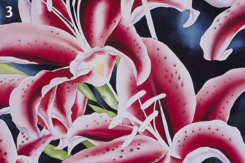 Painting a Stargazer Lilly with Watercolor 2