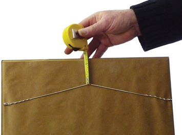 Photo showing hand with picure and tape measure