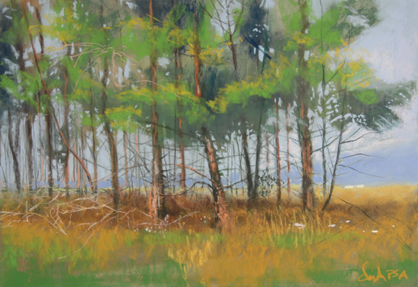 pastel landscape gallery tom christopher