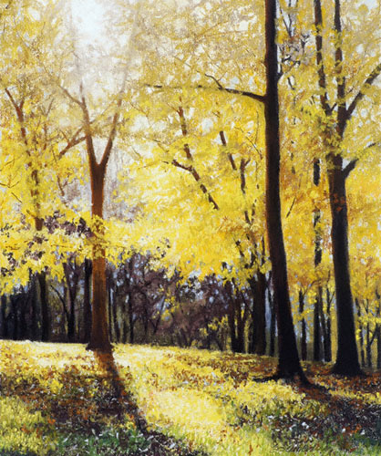 Yellow Trees (pastel, 21x17) by Stacie Seuberling
