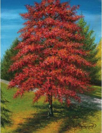 paint an autumn tree in acrylic with lee hammond