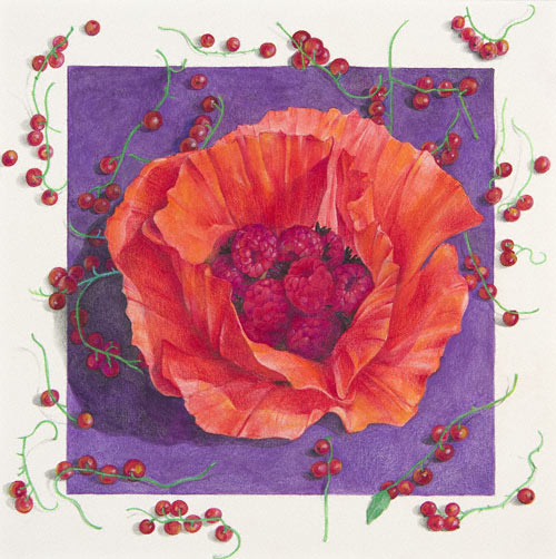Herbarium (watercolor and colored pencil, 201/2x201/2) by Karen Anne Klein