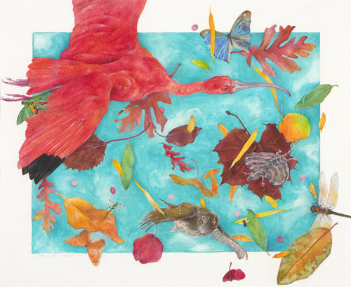 Scarlet Ibis (watercolor and colored pencil, 193/4x241/4) by Karen Anne Klein