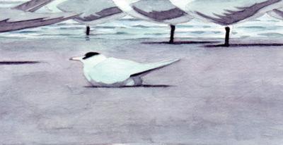 watercolor compositional study, Chris Bacon art
