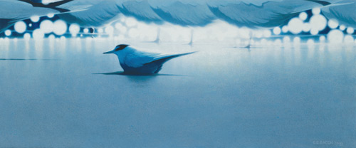 Moon Lights, Least Tern and Royal Tern by Chris Bacon, acrylic art, bird landscape painting