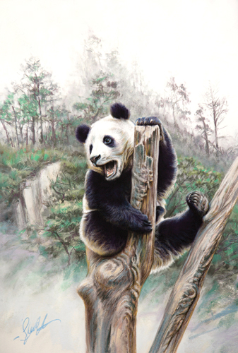 panda bear painted in pastel | Steve Morvell