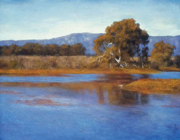 Devereux Slough Reflection (pastel, 19x25) by Jannene Behl