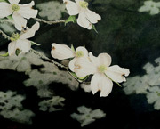 floral painting, watercolor painting, Alan Shuptrine art