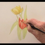 Beautiful Botanicals colored pencil flower drawing