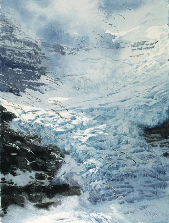 Splash Best of Watercolor Winners  |  Cascading Snows