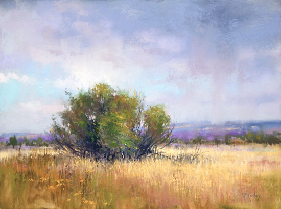 Malheur Rain (en plein air pastel, 11x14) by Richard McKinley