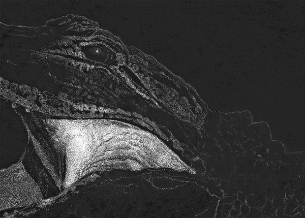 scratchboard stippling