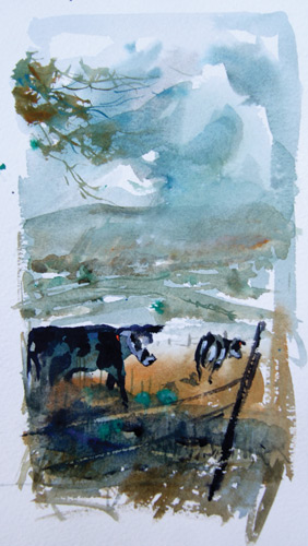 Watercolor Sketch of Cows | Sketching