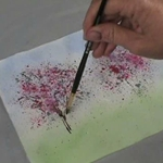 Watercolor Essentials with Birgit O'Connor