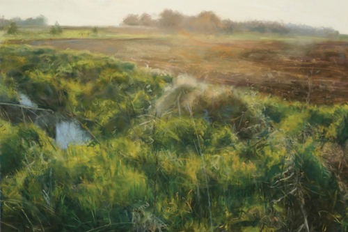 Field, Western Iowa by Bobbie McKibbin | pastel painting