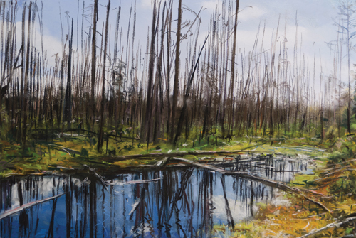 Yellowstone Burn II by Bobbie McKibbin | pastel painting