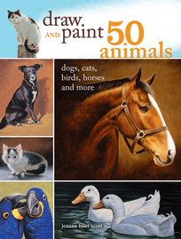 draw and paint 50 animals cover