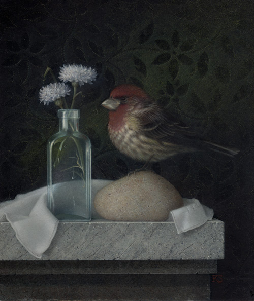 Image of Purple Finch and Bachelor Buttons by Koo Schadler