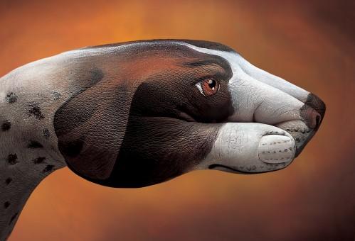 Guido Daniele art - Dog