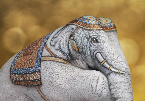 Guido Daniele art - Elephant