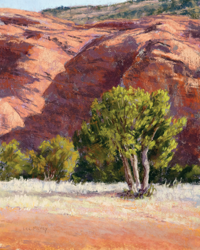 Red Rocks, Shadows and Tree (pastel) by Lee McVey