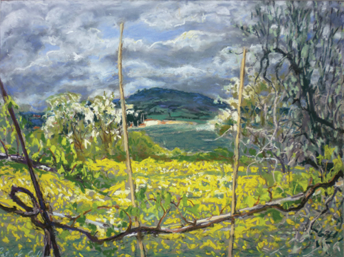 Mustard Field, Spring (pastel, 11.5x15) by Patrick Cullen