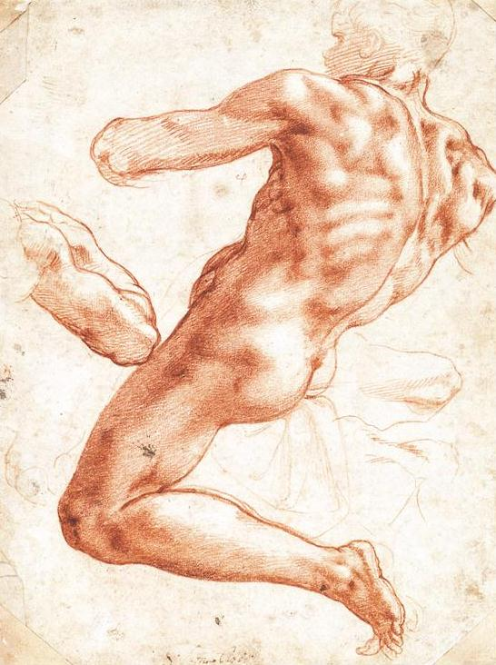 Seated Male Nude, by Michelangelo, ca. 1511, red chalk heightened with lead white, 11 x 8 ½. Collection Teylers Museum, Haarlem, Netherlands.