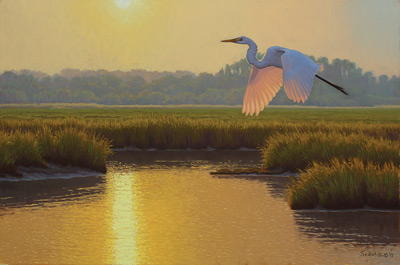 Evening Egret (oil, 16x24) by Matthew M. Schulz