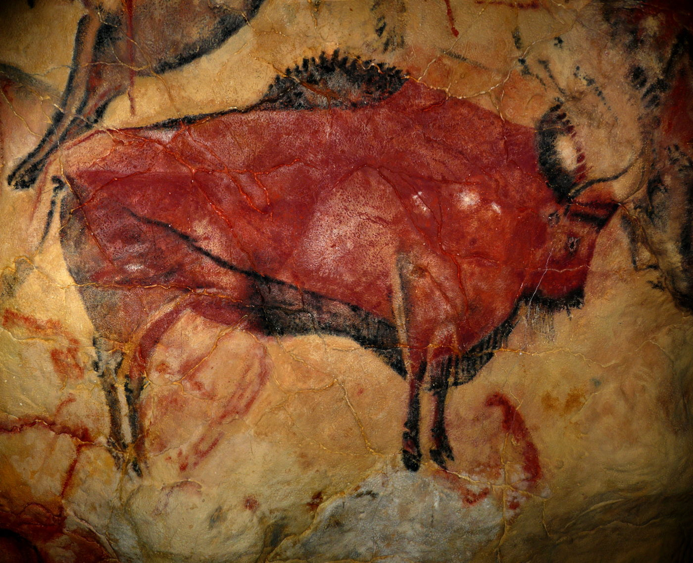 A painting of a bison from the cave of Altamira in Spain, created with red ochre between 15,000 and 16.500 BC.