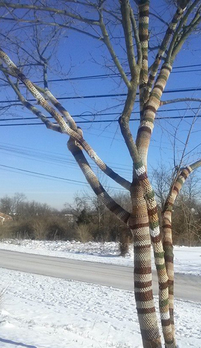 Yarnbombed tree, National Craft Month