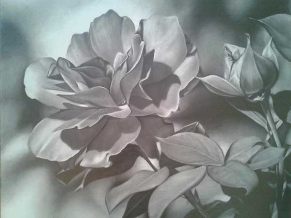 How to draw flowers in graphite