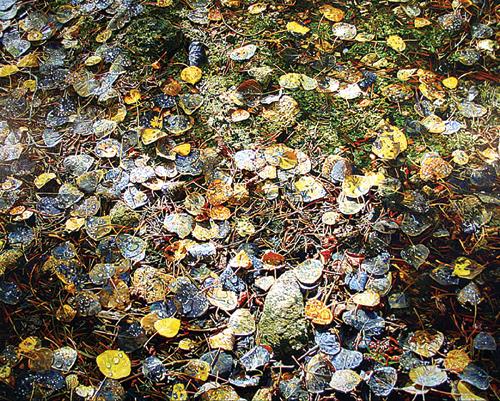 Teardrops (acrylic, 48x72) by Greg Navratil