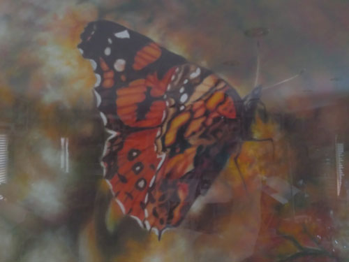 painting a butterfly with pastel