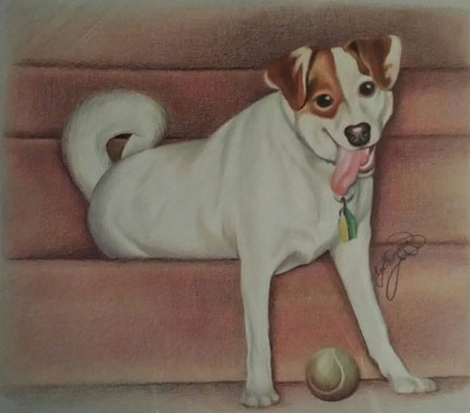 Dog drawing in colored pencil