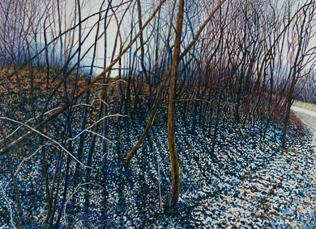 Illinois-Landscape-182-Harold-Gregor