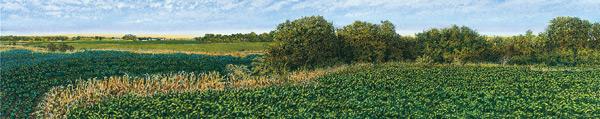 Illinois-Landscape-183-Harold-Gregor