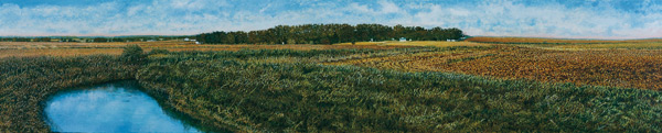 Illinois-Landscape-191-Harold-Gregor