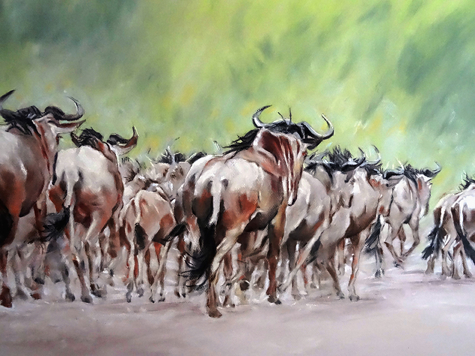 Wildebeest (pastel, 43xWildebeest (pastel) by Michele Illing60 cm) by Michele Illing