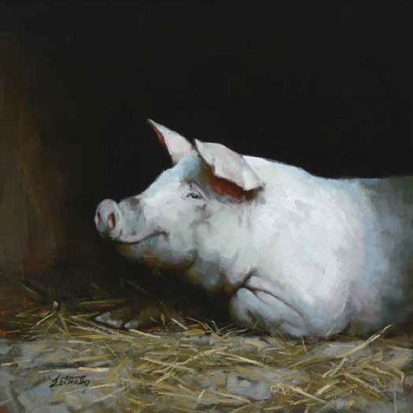 Oil painting by Brad Lethaby, pigs in art