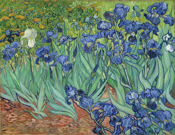 Irises by Vincent van Gogh, van Gogh letters