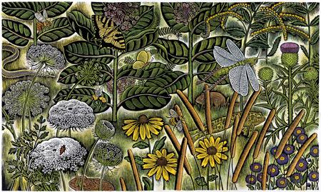Beth Krommes scratchboard art | ArtistsNetwork.com