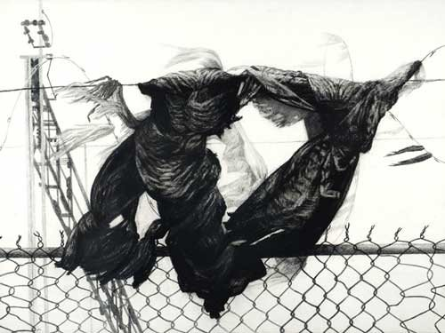 Fence by Joan Wadleigh Curran, charcoal drawing on paper, 30 x 22, 2009.
