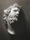 Cast Study—Laocoon by  2005, charcoal drawing