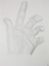 Contour drawing of students' hands completed during the workshop.